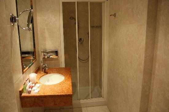 Athenaeum Hotel: baño