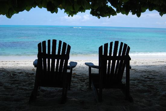 Νησί Ντενί, Σεϋχέλλες: Une des plages de DENIS ISLAND...2009