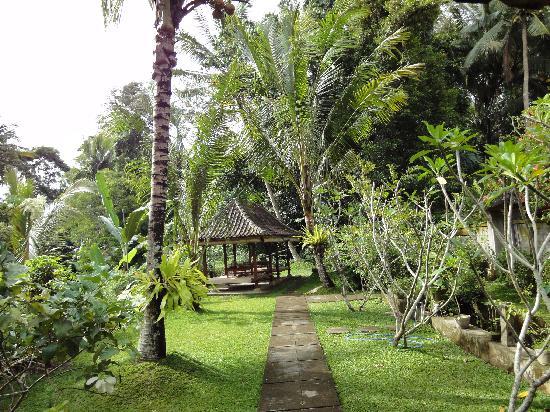 Coco Alami Guest House : L'espace repas / petit déjeuner