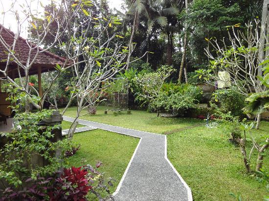 Coco Alami Guest House: Le jardin devant les chambres