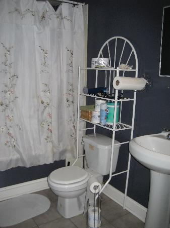 Harlem Bed and Breakfast: Bathroom