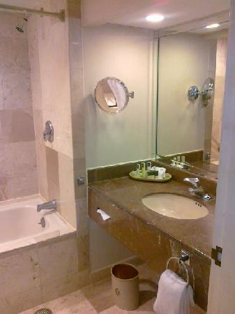 MS Milenium: La salle de bain