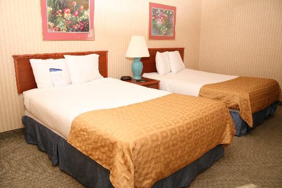 Baymont Inn & Suites Detroit/roseville: Standard Queens