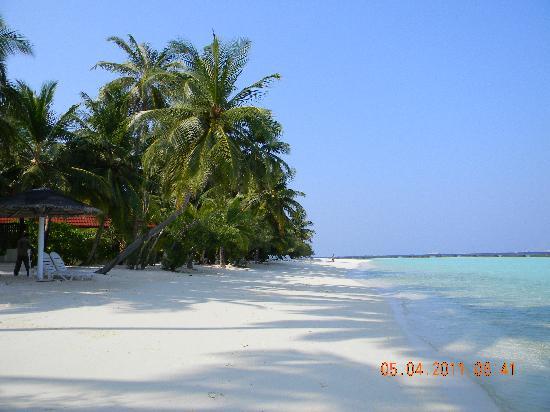 Kurumba Maldives: Пляж, где расположенны бунгало делюкс №180-190.