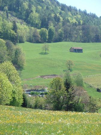 Maienfeld, Suiza: ハイジが飛び出してきそうな家