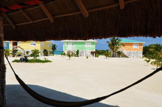 Royal Palm Island Resort: Hammock