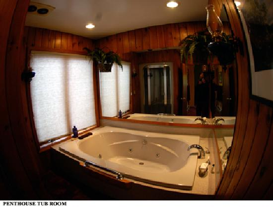 The Grouse House Bed and Breakfast: Jacuzzi and shower in suite