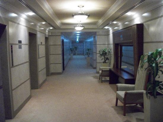 Winchester Hotel Apartments: Hallway