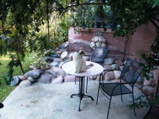 Casa Glebinias: patio