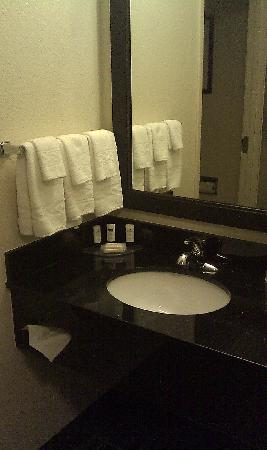 Fairfield Inn & Suites Jefferson City : Sink Area