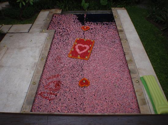 The Gangsa Private Villa by Kayumanis: Birthday surprise - petals in the pool