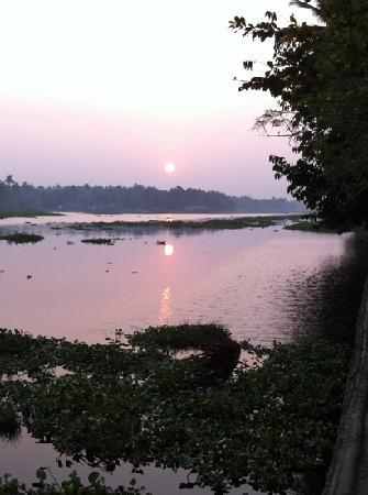 Philipkutty's Farm: morning light