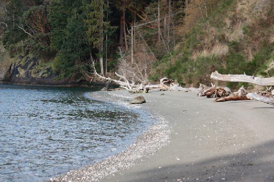 Driftwood Village: Hidden Beach, 25 minute walk/hike from resort