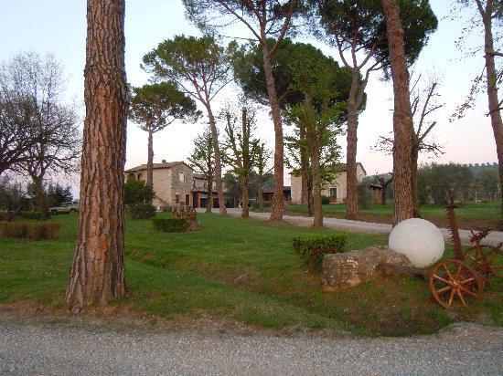 Villa Acquaviva: parco