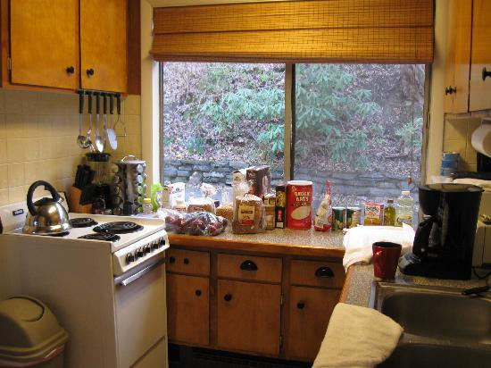 Asheville Swiss Chalets: quaint kitchen