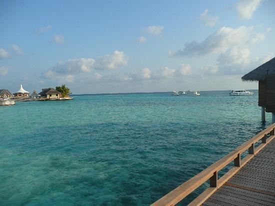 Baros Maldives: Island  1