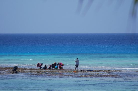 Verani Beach Hotel: Women picking sheels in front of the hotel