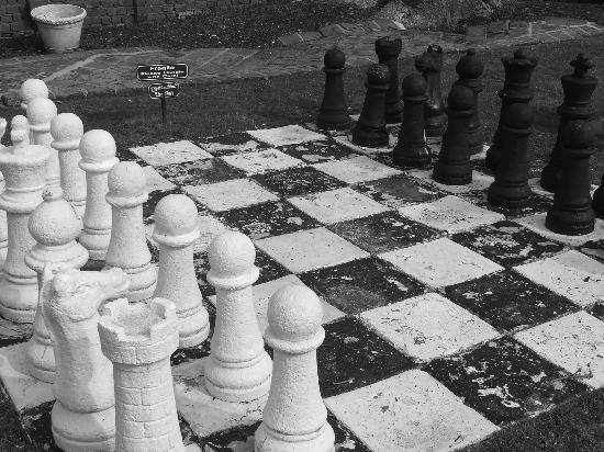 Historic Mankin Mansion Bed and Breakfast: Life size chess board