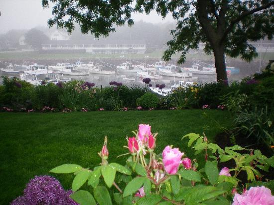 Ogunquit, ME: Billy's Garden, Perkins Cove Harbor in the fog