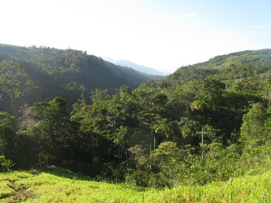 Hospedaje Girasoles: Bei unserer Dschungeltour