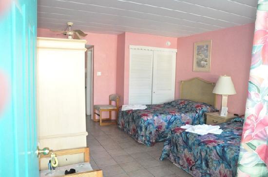 Bird of Paradise Motel: A- Room