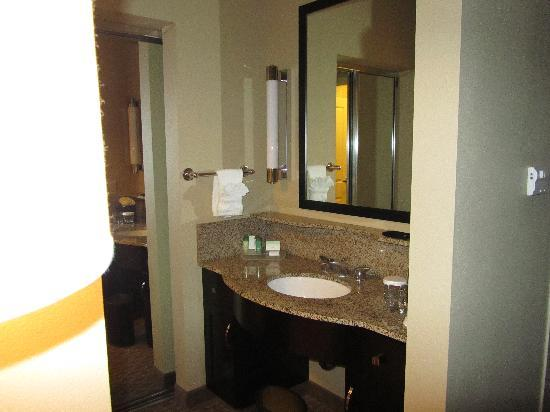 Homewood Suites by Hilton Plano-Richardson: bath area