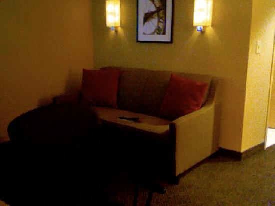 Cambria hotel & suites Raleigh-Durham Airport: couch with view of a large flatscreen TV (image reversed)