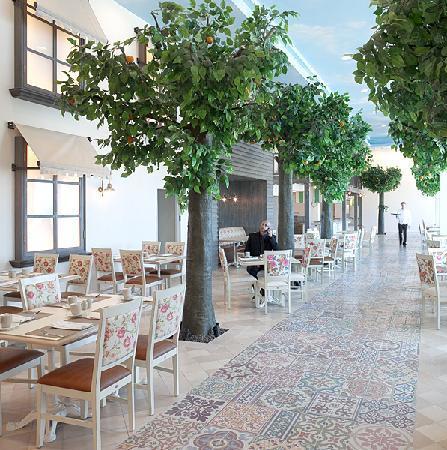 Herods Tel Aviv : Dining in the magical Tel Aviv athmoshpere