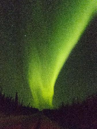 1st Alaska Tours: Spectacular Display of the Aurora