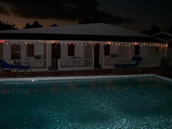 Golden Thistle Hotel: Pool Side at night