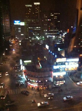 Lotte City Hotel Mapo: View