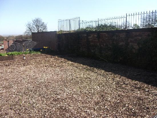 The Anfield B&B: back garden