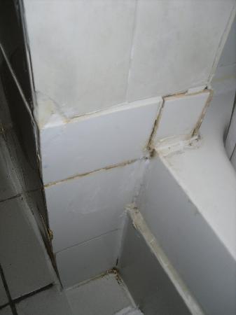 Hallam Hotel: Shower 2