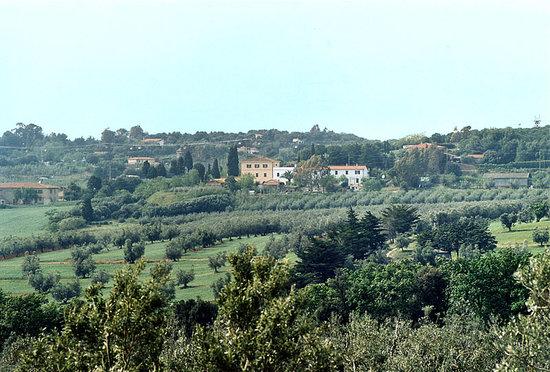 Photo of Podere SS. Annunziata II San Vincenzo