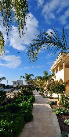 Aphrodite Sands Resort: Hotel territory