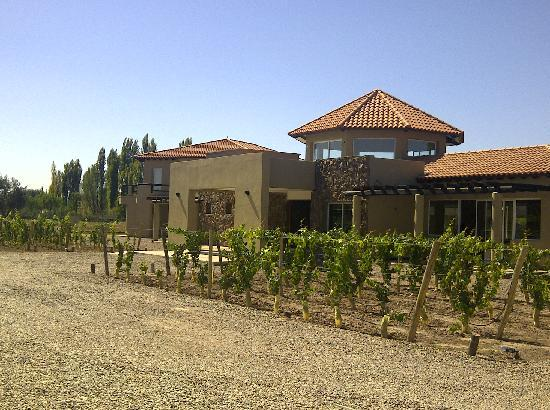 Villa Mansa Wine Hotel & Spa: Vineyard and main entrance