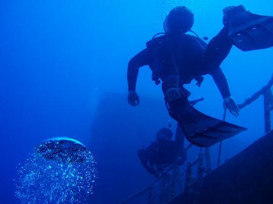Scubanauts Dive School: Diving on the um-el-faroud