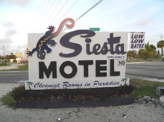 Siesta Motel: Less than 25' from noisiest hwy in Keys!