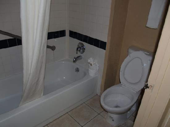 Quality Inn & Suites San Antonio Near at&T Center: Bathroom (toilets had 2 flush system)