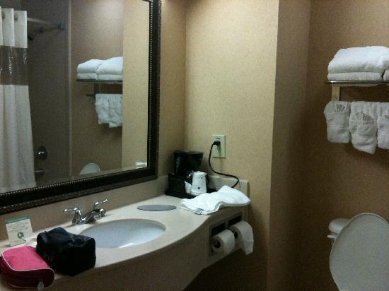 Best Western Plus Kendall Hotel & Suites: Bathroom
