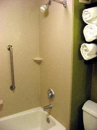 Hampton Inn Kansas City Airport: 浴室