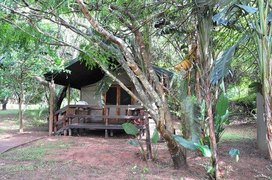 Falaza Game Park & Spa : Tent met buitenbadkamer