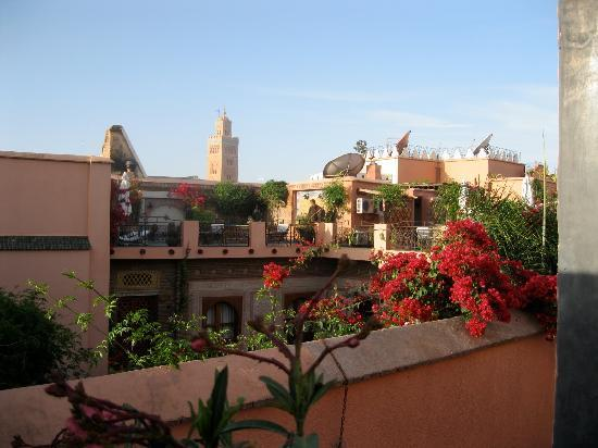 Riad Alamir: View from the terrace