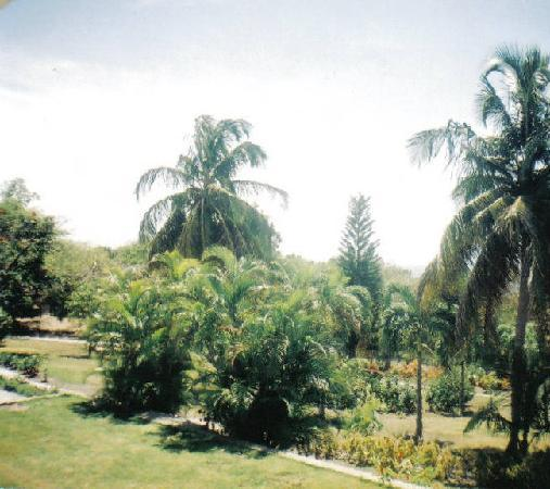 Botanical Gardens Montserrat