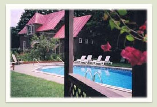Geyser Lodge Bed & Breakfast: The pool and Carriage House apartment