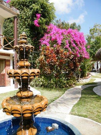 Contacto Natural: Beautiful gardens
