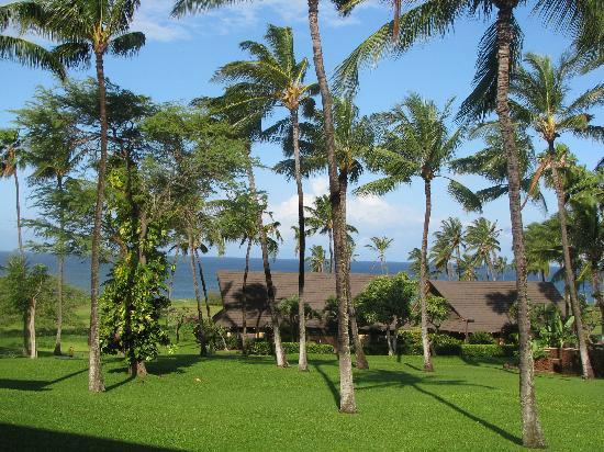 Molokai Hilltop Cottage & West End Studio: The view from the lanai