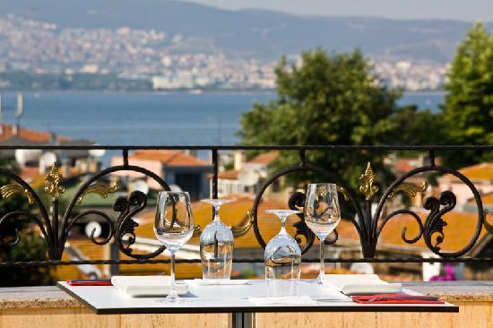 Ascot Hotel: View