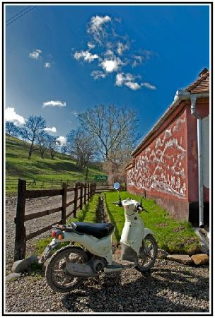 Cund, Romania: valea verde