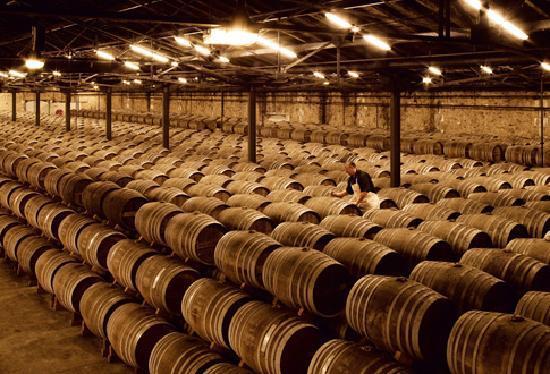 Cognac, Frankreich: Le Domaine Rémy Martin à Merpins